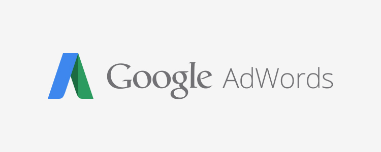 google-adwords-uzmani