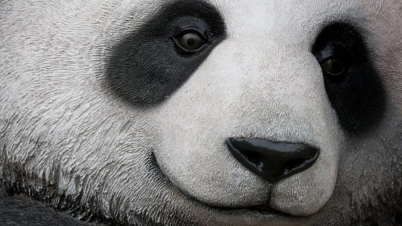 Photo of Panda 4.1 – Google'ın 27. Güncellemesi Yayınlanıyor