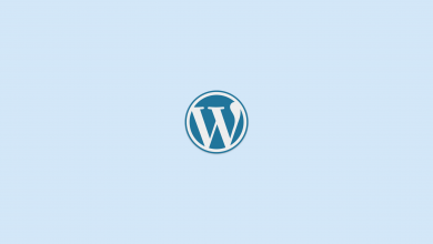 wordpress seo nasıl yapılır