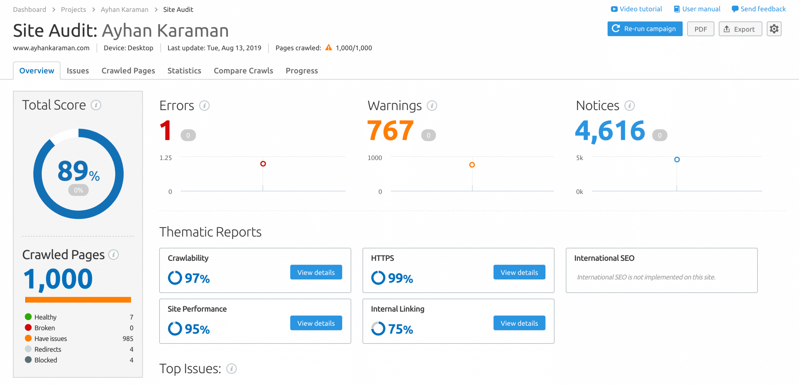 SemRush Site Analizi Ayhan